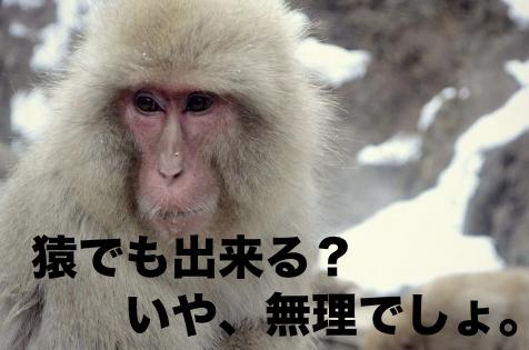 猿には出来ません